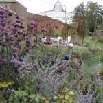 Couleurs et calme dans le jardin